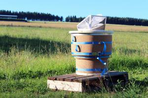 Zuwachs Die Biene als Fundament des Ökosystems - Ein Einstieg in die Bienenhaltung, Sophie Manche